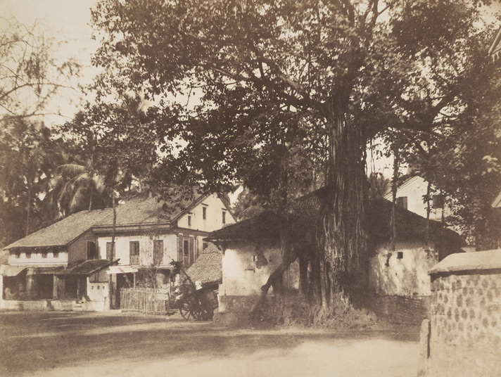 A view at Calbadavie [Bombay].